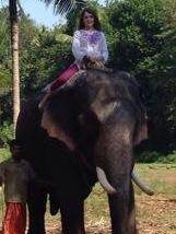 riding elephant in India